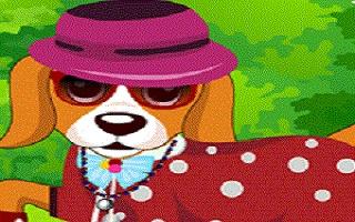 Funny Dog Dress UP